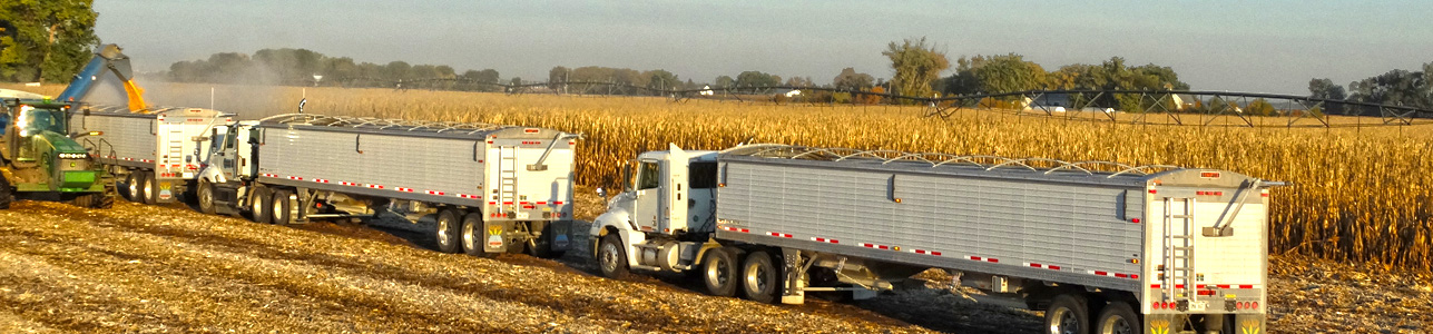 Slide Grain Trailer 7